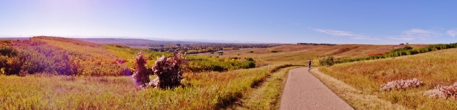 Nose Hill Park, on the doorstep of the university.