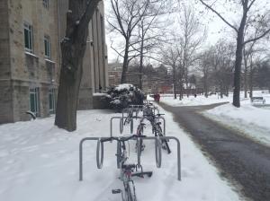 Winter in Hamilton