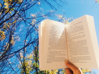 Reading a canadian book under the canadian sun.