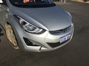 Our broken front bumper. There's a reason cars have roo bars...