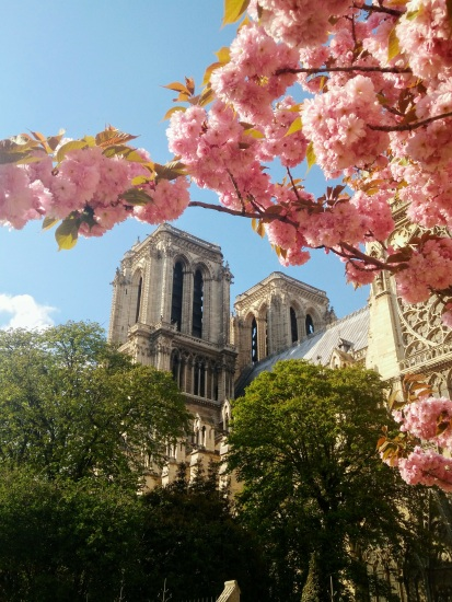 Oh the summer time is coming,and the trees are sweetly blooming,...